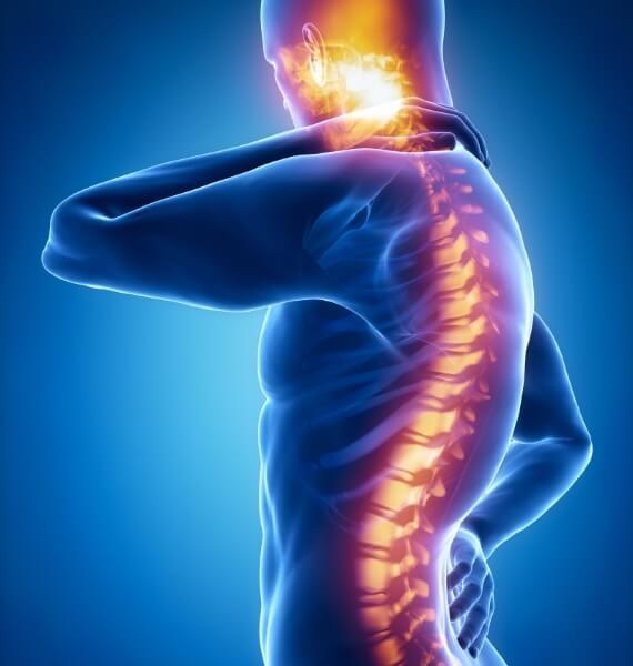 Doenças da Medula Espinhal